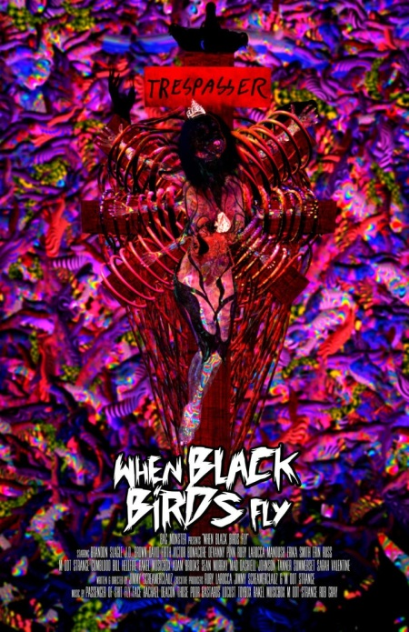 when_black_birds_fly_poster